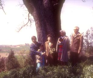 1985: Dario e la moglie Lia ai piedi della grande quercia del Brugnetto, nella valle del Misa. A sinistra, l'Autore con la moglie ed il figlio.