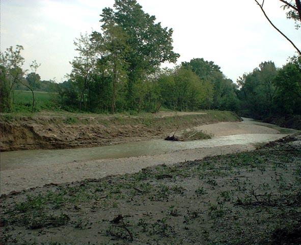 Erosione Misa - Loc. Pioli (2) - maggio 2006