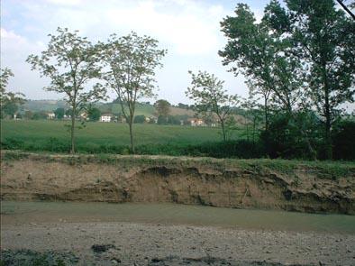 Erosione Misa - Loc. Pioli (1) - maggio 2006