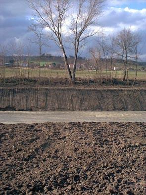 Erosione Misa - Loc. Pioli (1) - febbraio 2006