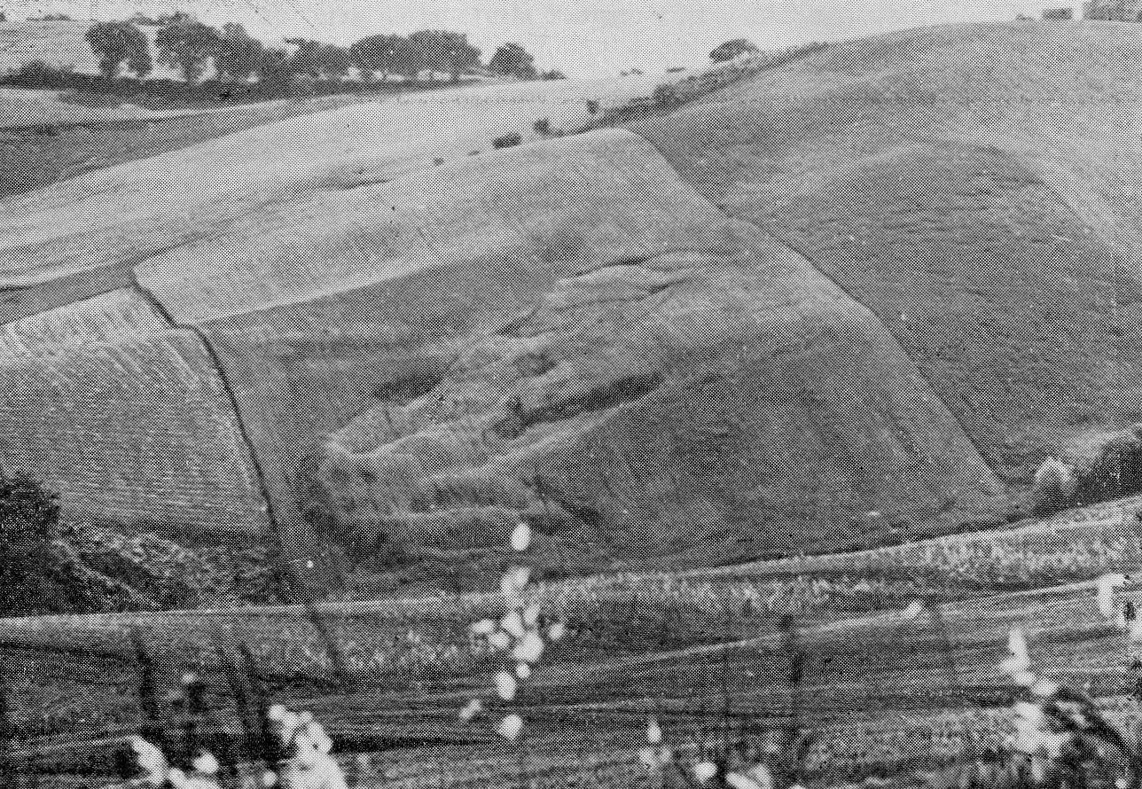 Processo avanzato di degradazione del suolo agrario nella collina marchigiana (Proposte e Ricerche, 1978)