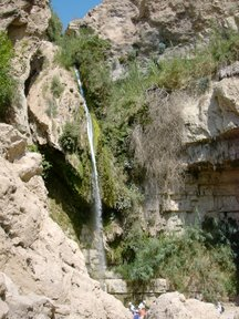 Cascata di David (Riserva naturale di Ein Gedi)