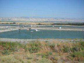 Vasche per allevamenti ittici (valle del Giordano)