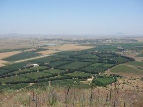 Confine Siria-Israele e la vecchia città di Qunetra (alture del Golan)