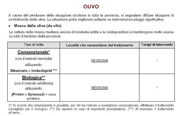 Bollettino ASSAM: particolari sul trattamenti dell'olivo